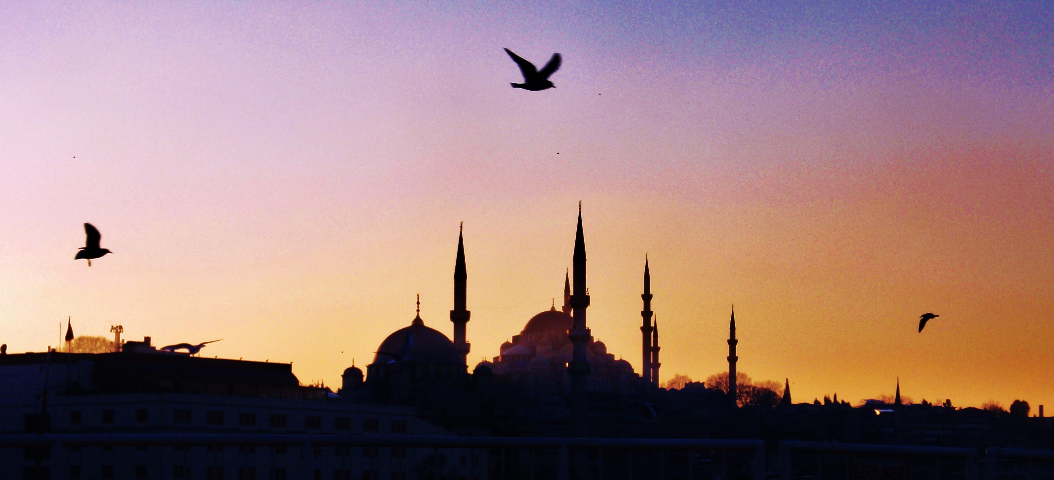 wandtattoo istanbul skyline pin kiz kulesi wandtattoo