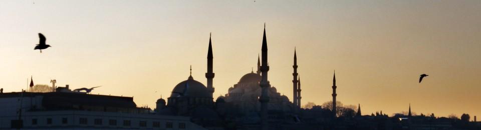 Turkeywithstuffin's Blog